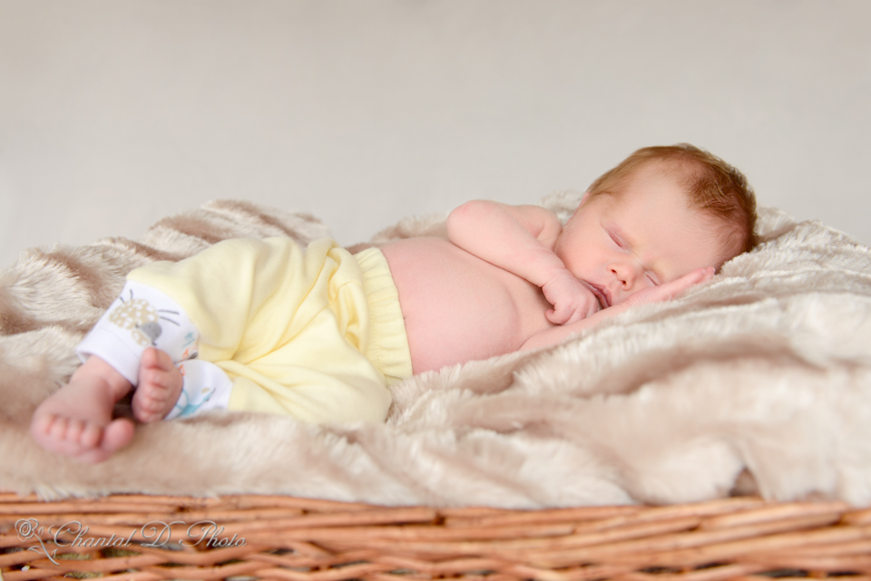 Baby Isabella - Newborn Photoshoot